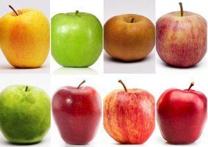 manzanas inspiración para pendientes niña bebé plata oro