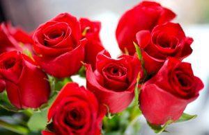 pendientes de flores rosas